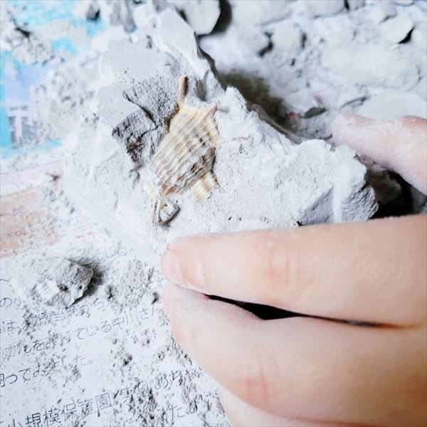 発掘シリーズ 発掘途中