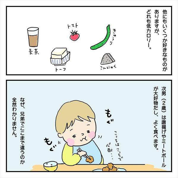 なぜ、食べないのか。息子の偏食日記7