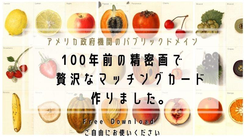 【米・政府機関発】100年前の精密画で作る贅沢な「果物マッチングカード」
